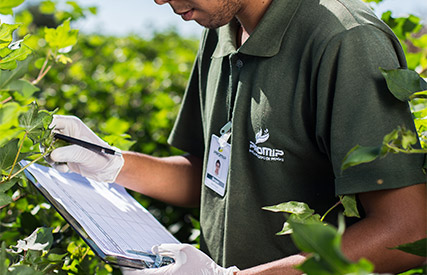 promip manejo integrado pragas controle biologico servico coleta organismos mobile 2