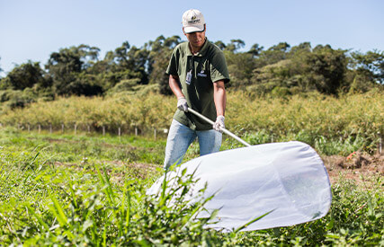 promip manejo integrado pragas controle biologico servico coleta organismos mobile
