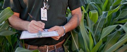 promip manejo integrado pragas controle biologico servicos eficacia praticabilidade agronomica mobile 2