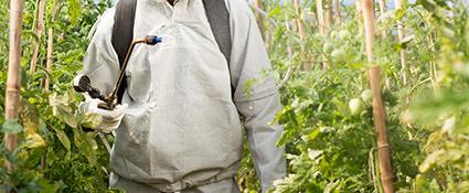 promip manejo integrado pragas controle biologico servicos eficacia praticabilidade agronomica mobile 3