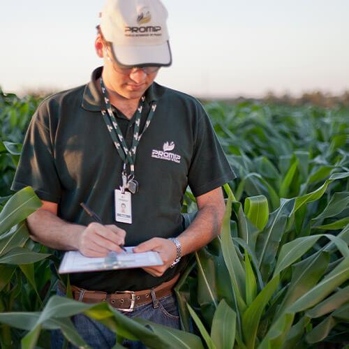 promip manejo integrado pragas controle biologico servicos eficacia praticabilidade agronomica