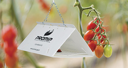 promip manejo integrado pragas controle biologico mip experience artigo lagartas desfoladoras brocadoras armadilha feromonio mobile