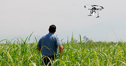 promip manejo integrado de pragas controle biologico agricultor visionario drone mobile