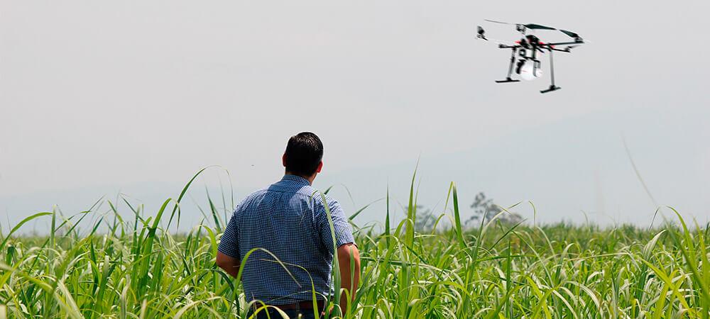 promip manejo integrado de pragas controle biologico agricultor visionario drone
