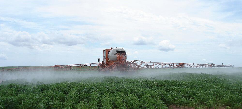 promip manejo integrado pragas controle biologico mip experience percevejo soja controle quimico