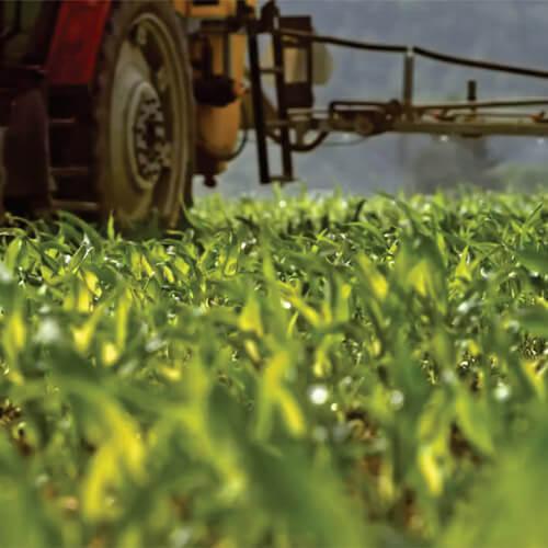 promip manejo integrado pragas controle biologico mip experience artigo ferrugens soja controle aplicacao terrestre