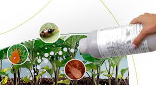 promip manejo integrado pragas controle biologico mip experience monitoramento pragas entendendo bioprodutos parte 1 capa mobile