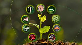promip manejo integrado pragas controle biologico mip experience monitoramento pragas entendendo bioprodutos parte 2 capa mobile